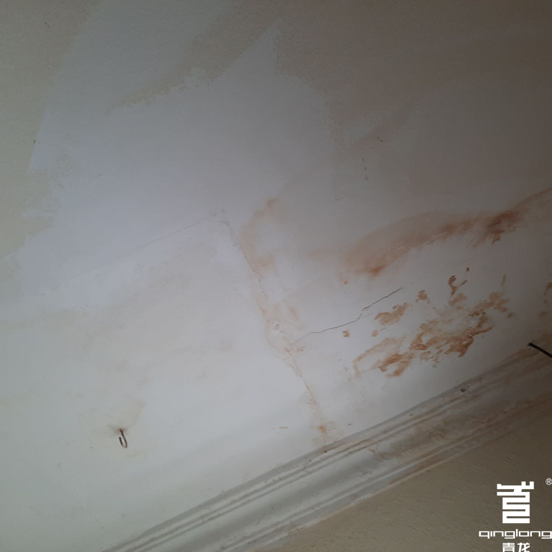 Mould growing on a wall